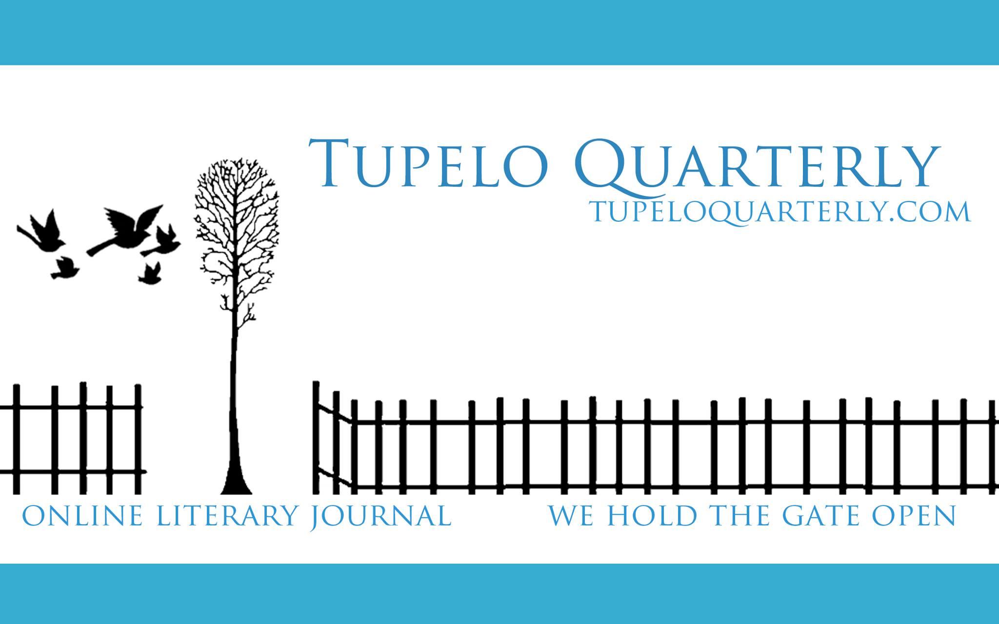 TQ banner