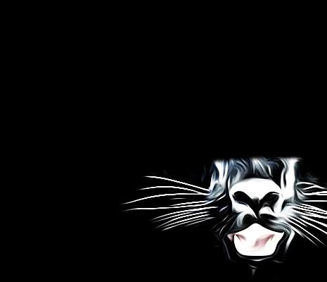 jaguar face cover cut